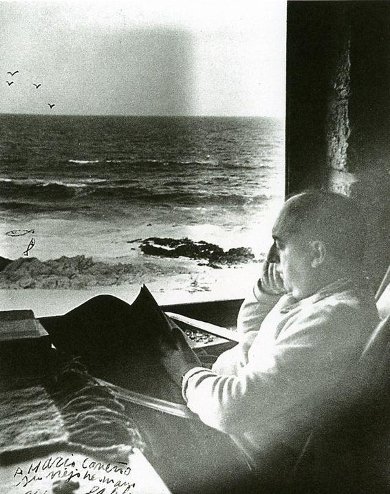 Neruda_islanegra