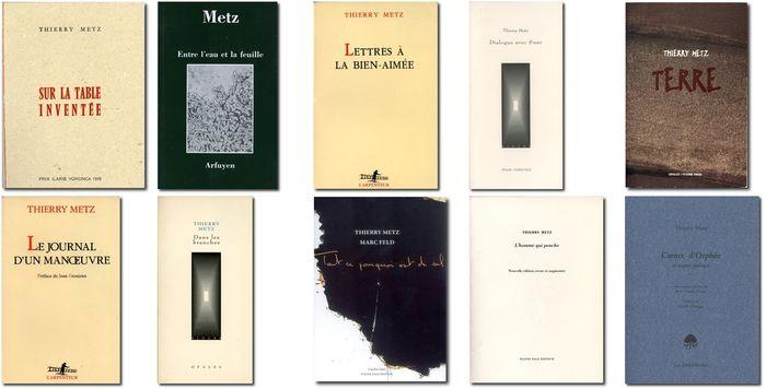 Bibliothèque Thierry Metz