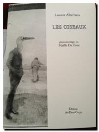 Laurent Albarracin | Les oiseaux